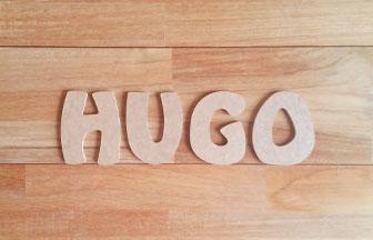 lettres en bois à customiser majuscules prénom garçon hugo